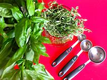 organic herbs for organic salmon recipe